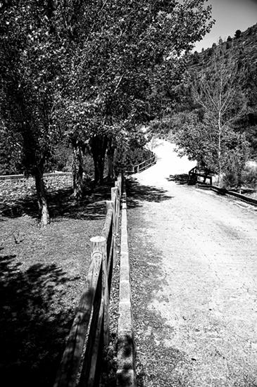 L'hort de Soriano nº 3
