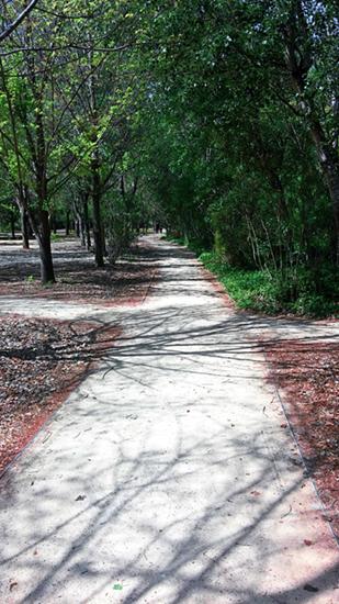 Parque Rambleta
